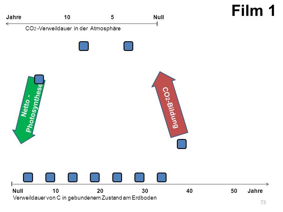 Netto - Photosynthese CO 2 -Bildung 73 1020304050 Jahre Verweildauer von C in gebundenem Zustand am Erdboden CO 2 -Verweildauer in der Atmosphäre Null