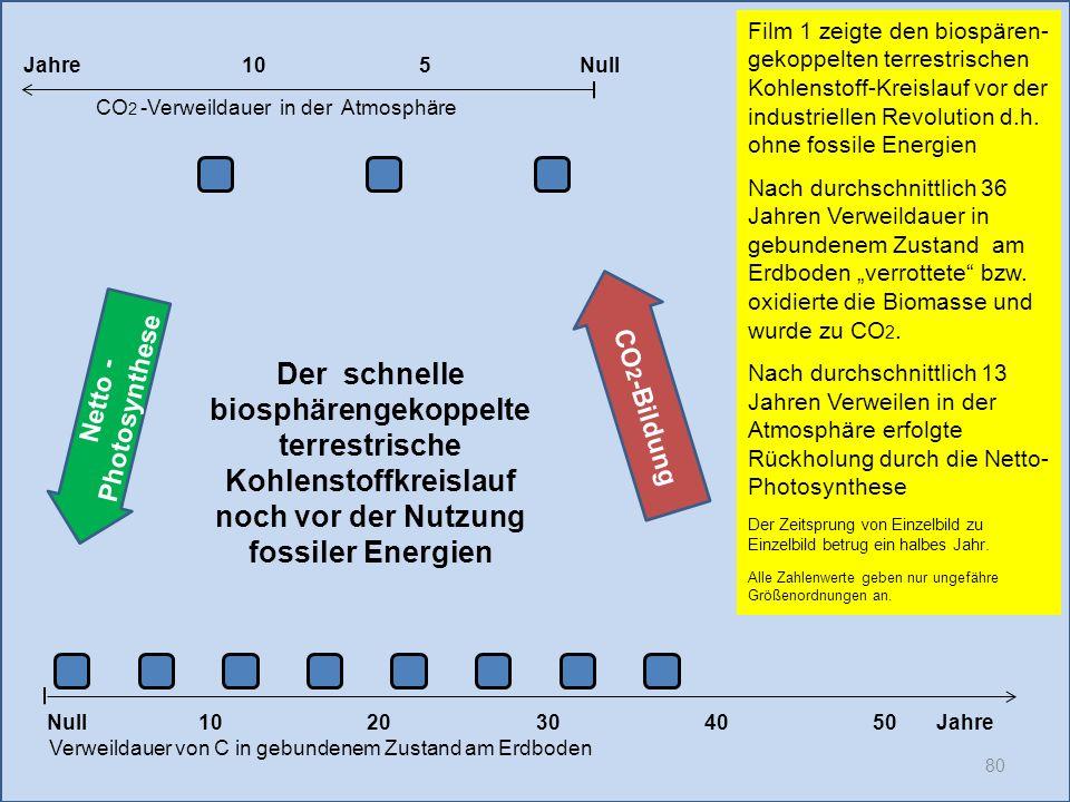 80 1020304050 Jahre Verweildauer von C in gebundenem Zustand am Erdboden CO 2 -Verweildauer in der Atmosphäre Film 1 zeigte den biospären- gekoppelten