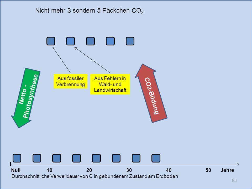 83 1020304050 Jahre Durchschnittliche Verweildauer von C in gebundenem Zustand am Erdboden CO 2 -Bildung Null Netto - Photosynthese Aus fossiler Verbr