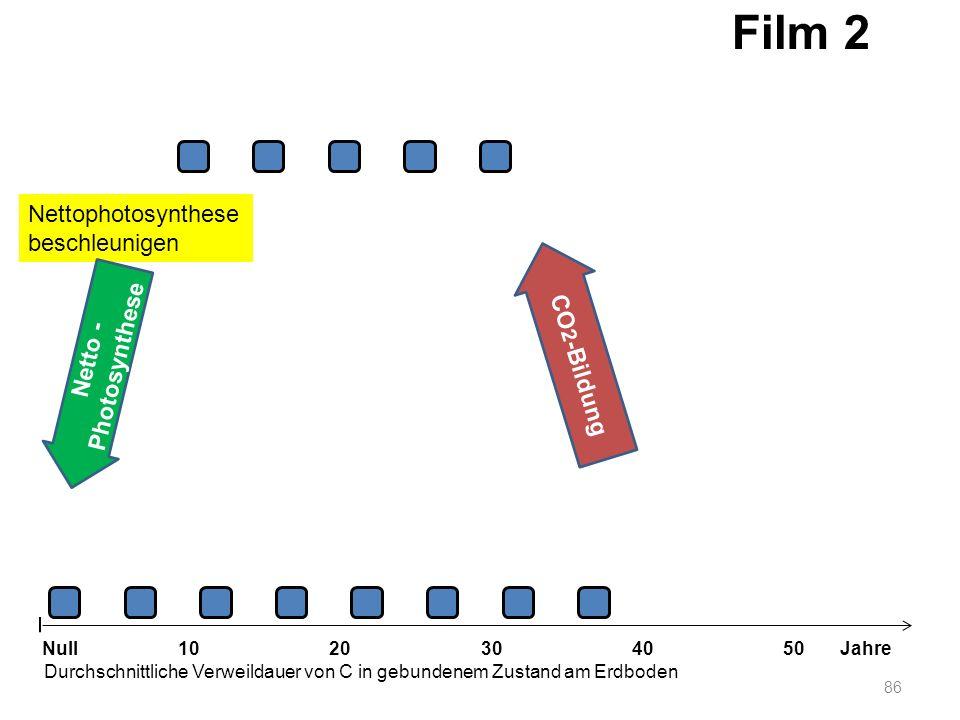 Nettophotosynthese beschleunigen 86 1020304050 Jahre Durchschnittliche Verweildauer von C in gebundenem Zustand am Erdboden Null Netto - Photosynthese