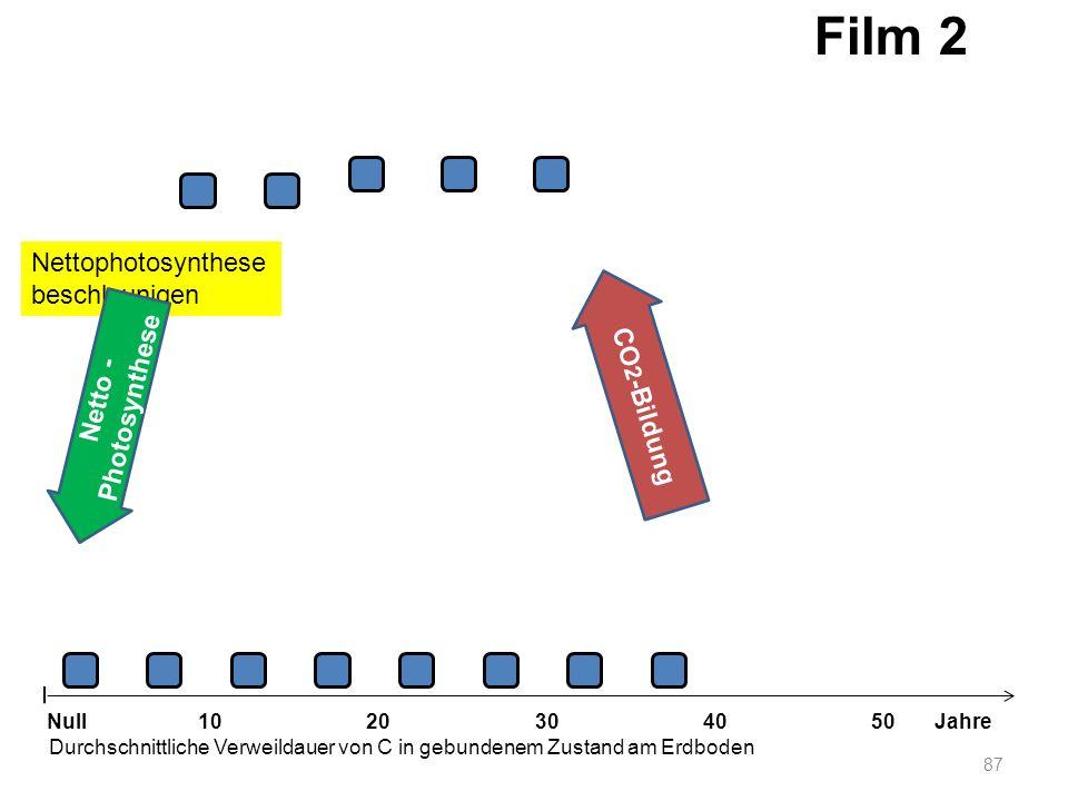 Nettophotosynthese beschleunigen 87 1020304050 Jahre Durchschnittliche Verweildauer von C in gebundenem Zustand am Erdboden Null Netto - Photosynthese