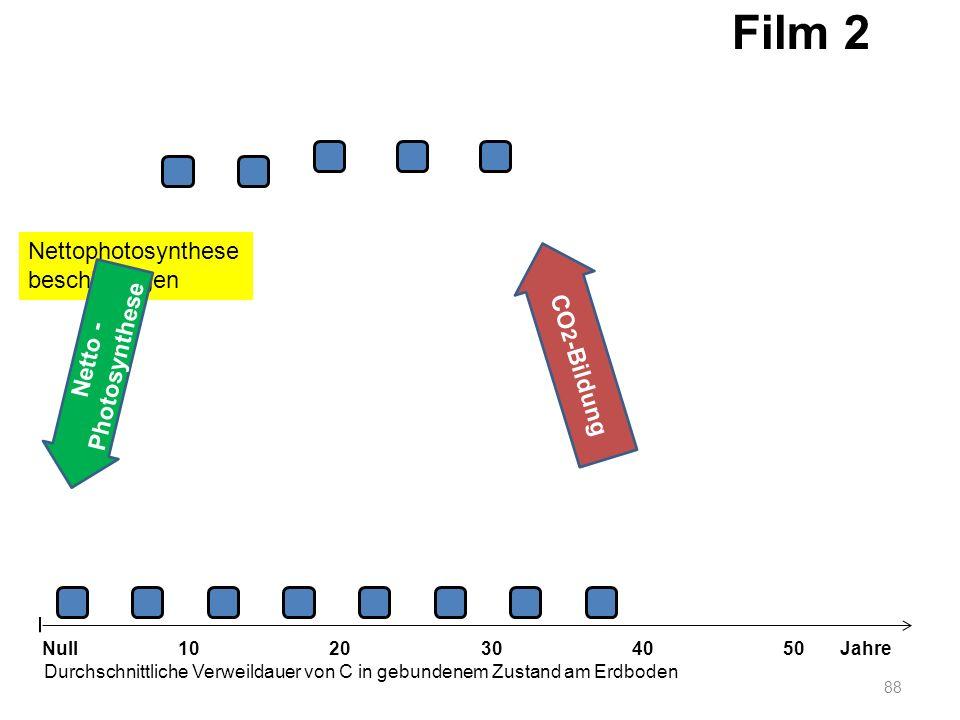 Nettophotosynthese beschleunigen 88 1020304050 Jahre Durchschnittliche Verweildauer von C in gebundenem Zustand am Erdboden Null Netto - Photosynthese