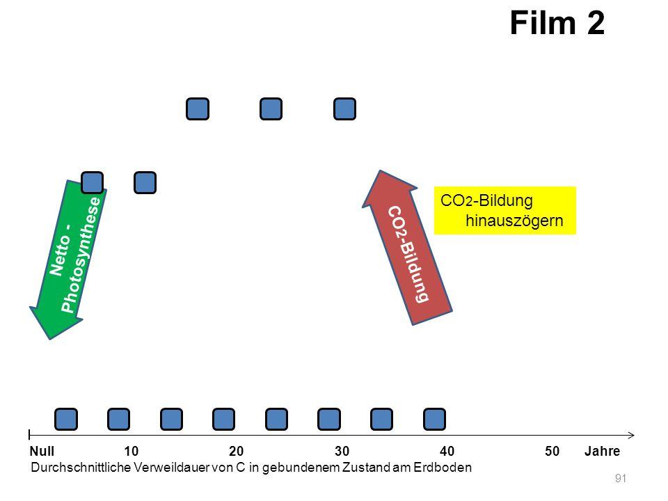 Netto - Photosynthese 91 1020304050 Jahre Durchschnittliche Verweildauer von C in gebundenem Zustand am Erdboden Null CO 2 -Bildung Film 2 CO 2 -Bildu