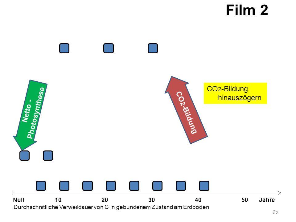 Netto - Photosynthese 95 1020304050 Jahre Durchschnittliche Verweildauer von C in gebundenem Zustand am Erdboden Null CO 2 -Bildung Film 2 CO 2 -Bildu