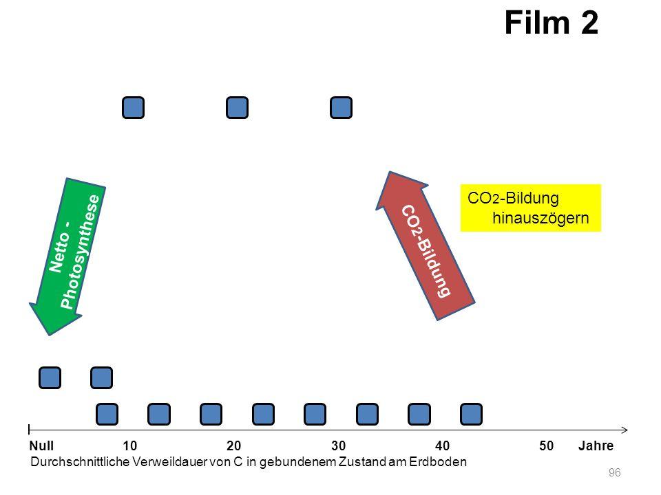 Netto - Photosynthese 96 1020304050 Jahre Durchschnittliche Verweildauer von C in gebundenem Zustand am Erdboden Null CO 2 -Bildung Film 2 CO 2 -Bildu
