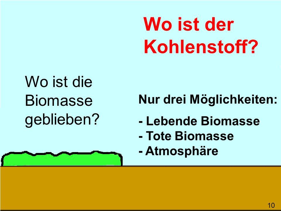 Wo ist die Biomasse geblieben? Wo ist der Kohlenstoff? Nur drei Möglichkeiten: - Lebende Biomasse - Tote Biomasse - Atmosphäre 100