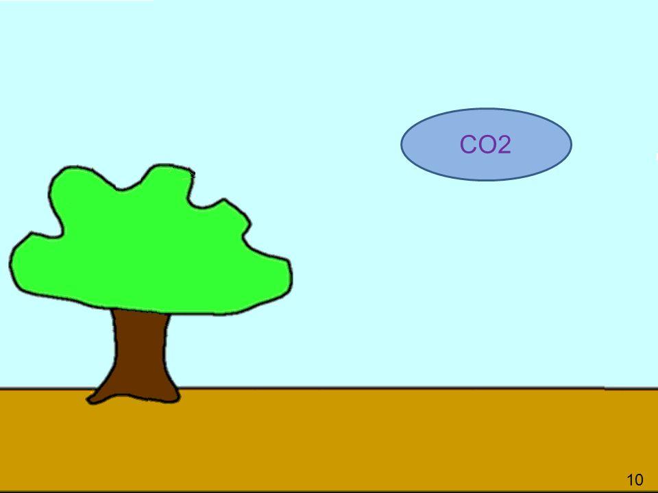 101 CO2