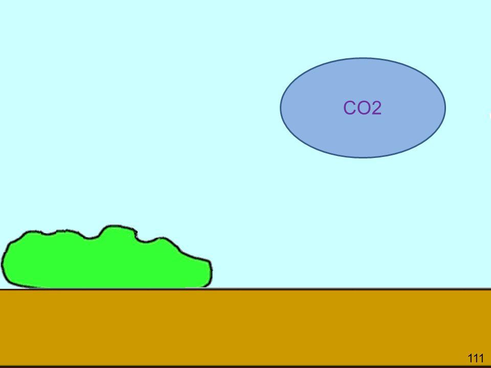 111 CO2