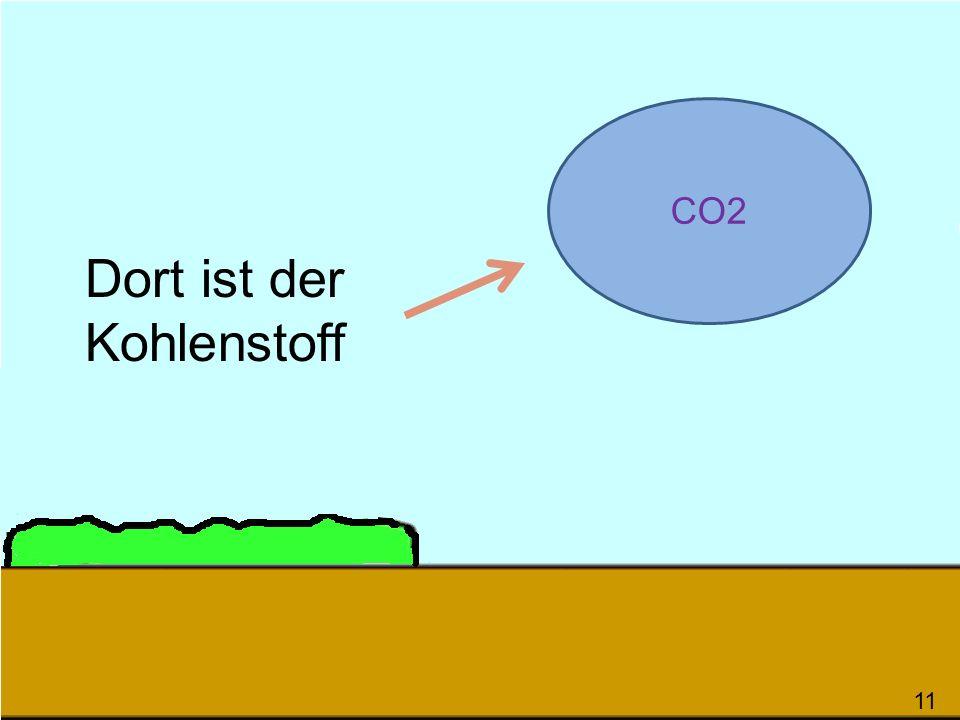 Dort ist der Kohlenstoff 116 CO2