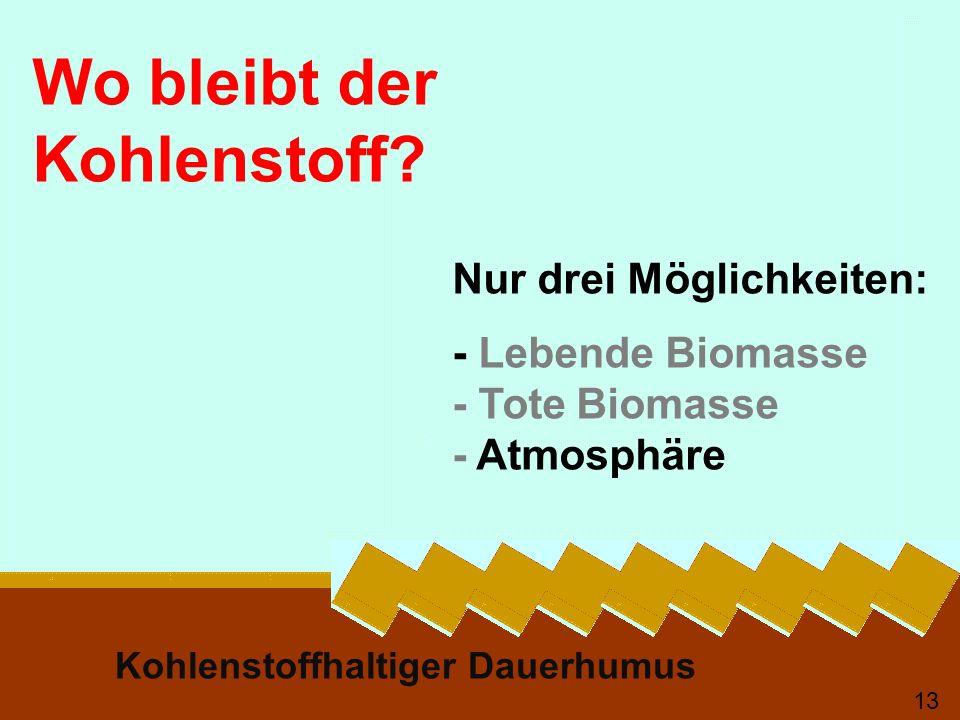 Kohlenstoffhaltiger Dauerhumus 130 Wo bleibt der Kohlenstoff? Nur drei Möglichkeiten: - Lebende Biomasse - Tote Biomasse - Atmosphäre