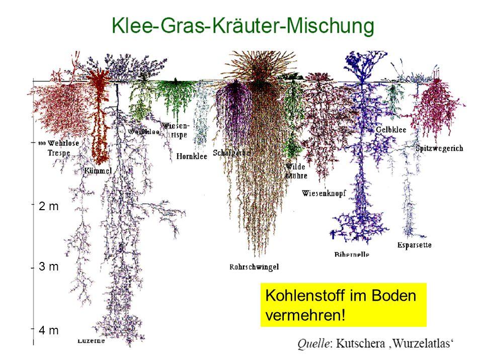 133 4 m 3 m 2 m Kohlenstoff im Boden vermehren!
