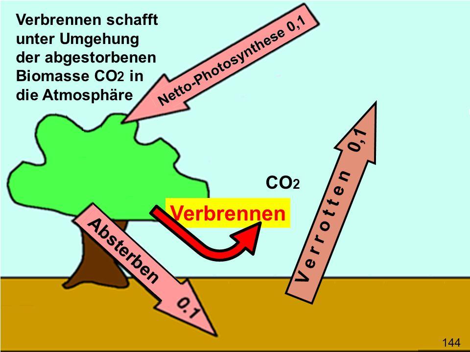 Verbrennen V e r r o t t e n 0,1 CO 2 Verbrennen schafft unter Umgehung der abgestorbenen Biomasse CO 2 in die Atmosphäre 144