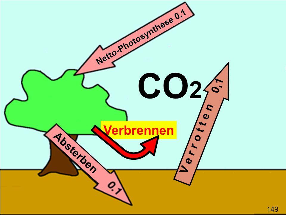 Verbrennen V e r r o t t e n 0,1 CO 2 149