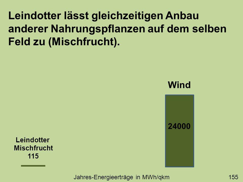 Leindotter lässt gleichzeitigen Anbau anderer Nahrungspflanzen auf dem selben Feld zu (Mischfrucht). 24000 Leindotter Mischfrucht 115 Wind Jahres-Ener