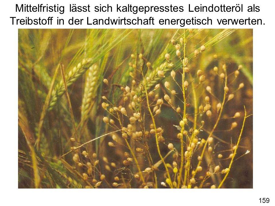Mittelfristig lässt sich kaltgepresstes Leindotteröl als Treibstoff in der Landwirtschaft energetisch verwerten. 159
