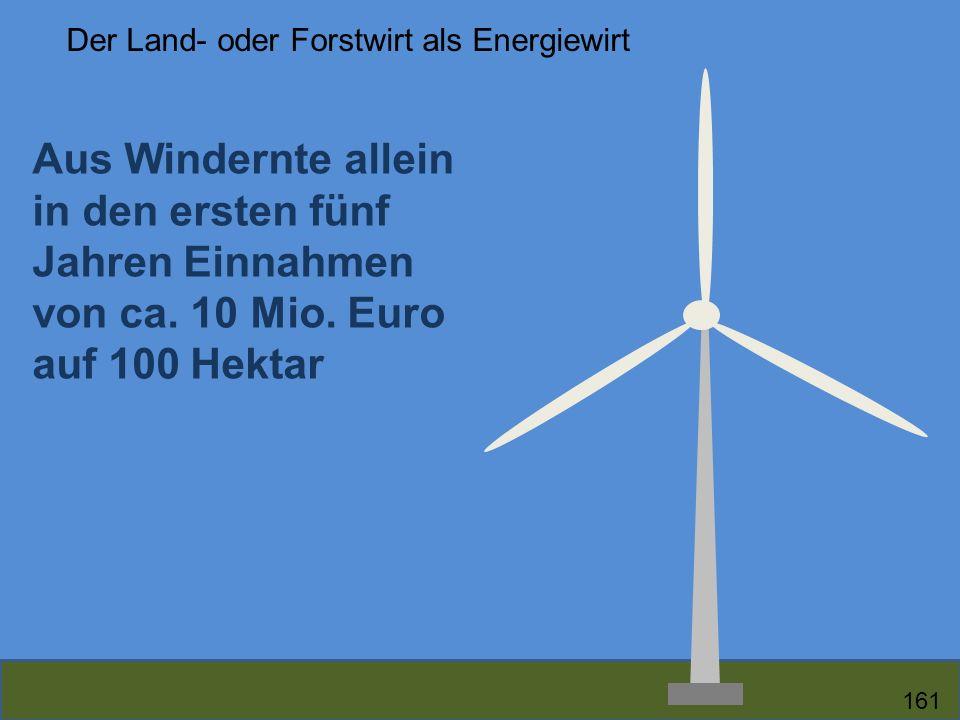 Aus Windernte allein in den ersten fünf Jahren Einnahmen von ca. 10 Mio. Euro auf 100 Hektar Der Land- oder Forstwirt als Energiewirt 161