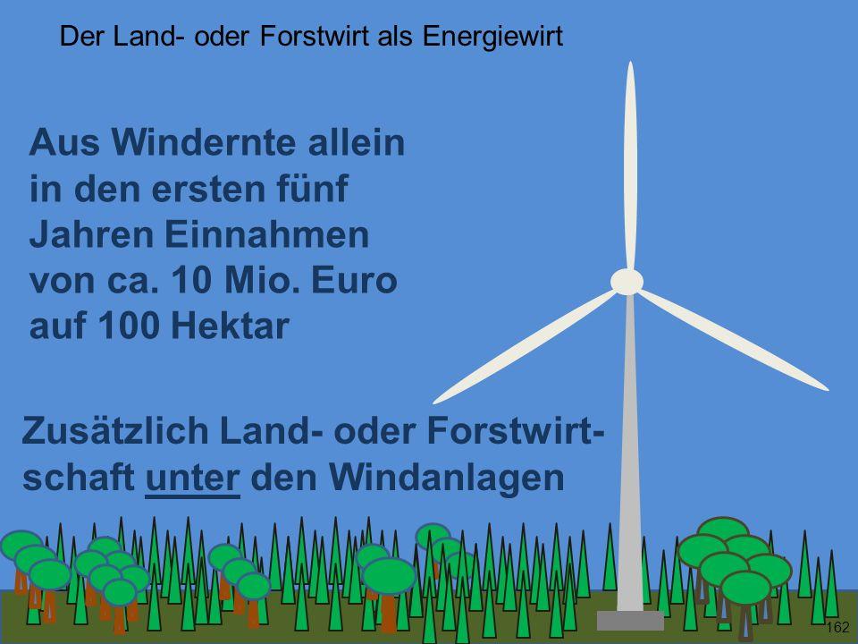 162 Zusätzlich Land- oder Forstwirt- schaft unter den Windanlagen Aus Windernte allein in den ersten fünf Jahren Einnahmen von ca. 10 Mio. Euro auf 10