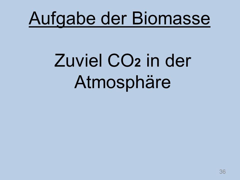 Zuviel CO 2 in der Atmosphäre 36 Aufgabe der Biomasse