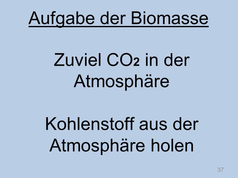Zuviel CO 2 in der Atmosphäre Kohlenstoff aus der Atmosphäre holen 37 Aufgabe der Biomasse