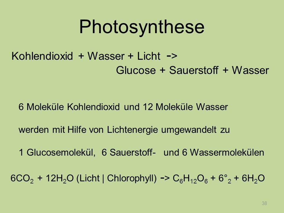 38 Photosynthese Kohlendioxid + Wasser + Licht - > Glucose + Sauerstoff + Wasser 6 Moleküle Kohlendioxid und 12 Moleküle Wasser werden mit Hilfe von L