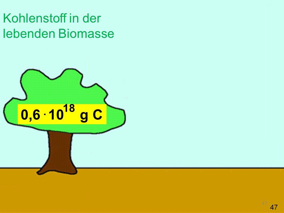 47 0,6 10 g C Kohlenstoff in der lebenden Biomasse. 18 47