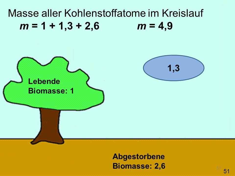 51 Masse aller Kohlenstoffatome im Kreislauf m = 1 + 1,3 + 2,6 m = 4,9 Lebende Biomasse: 1 Abgestorbene Biomasse: 2,6 51 1,3