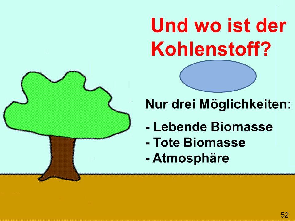 Und wo ist der Kohlenstoff? 52 Nur drei Möglichkeiten: - Lebende Biomasse - Tote Biomasse - Atmosphäre