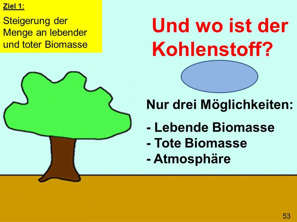 Und wo ist der Kohlenstoff? 53 Nur drei Möglichkeiten: - Lebende Biomasse - Tote Biomasse - Atmosphäre Ziel 1: Steigerung der Menge an lebender und to