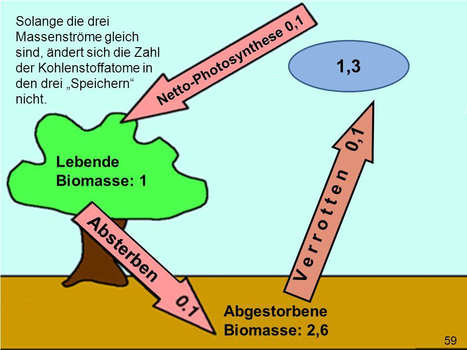 V e r r o t t e n 0,1 Solange die drei Massenströme gleich sind, ändert sich die Zahl der Kohlenstoffatome in den drei Speichern nicht. Lebende Biomas