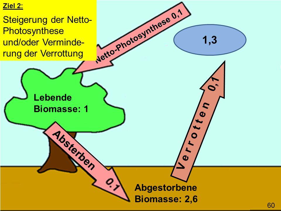V e r r o t t e n 0,1 Lebende Biomasse: 1 Abgestorbene Biomasse: 2,6 60 Ziel 2: Steigerung der Netto- Photosynthese und/oder Verminde- rung der Verrot