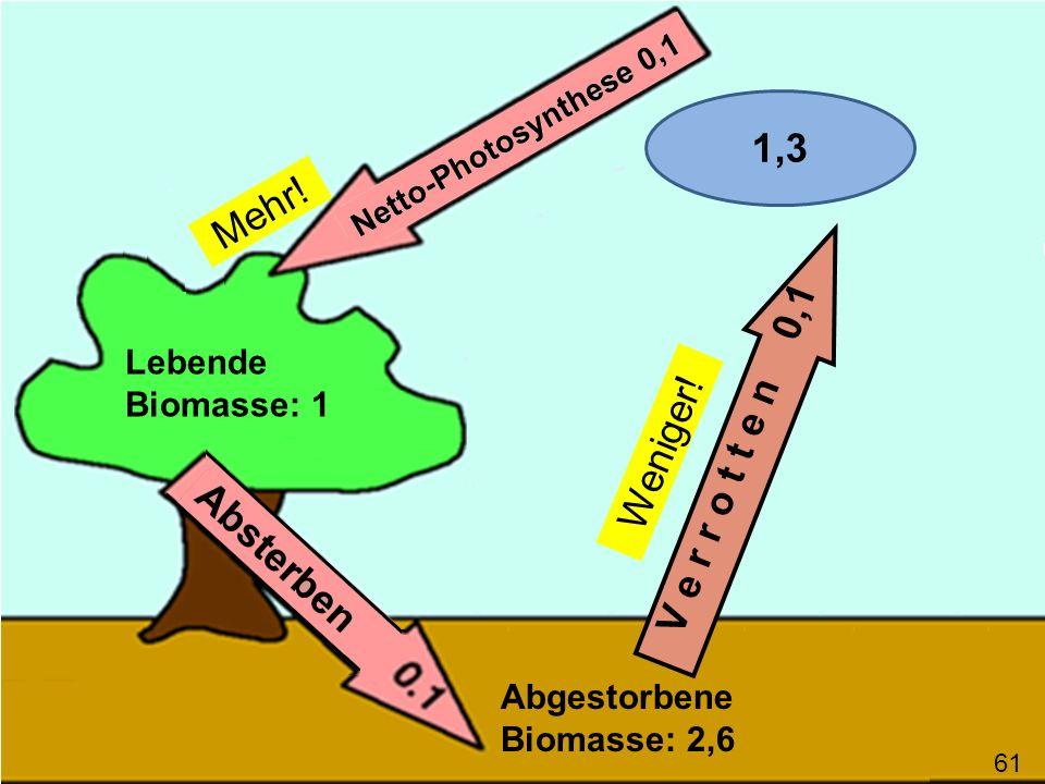 V e r r o t t e n 0,1 Lebende Biomasse: 1 Abgestorbene Biomasse: 2,6 61 1,3 Mehr! Weniger!