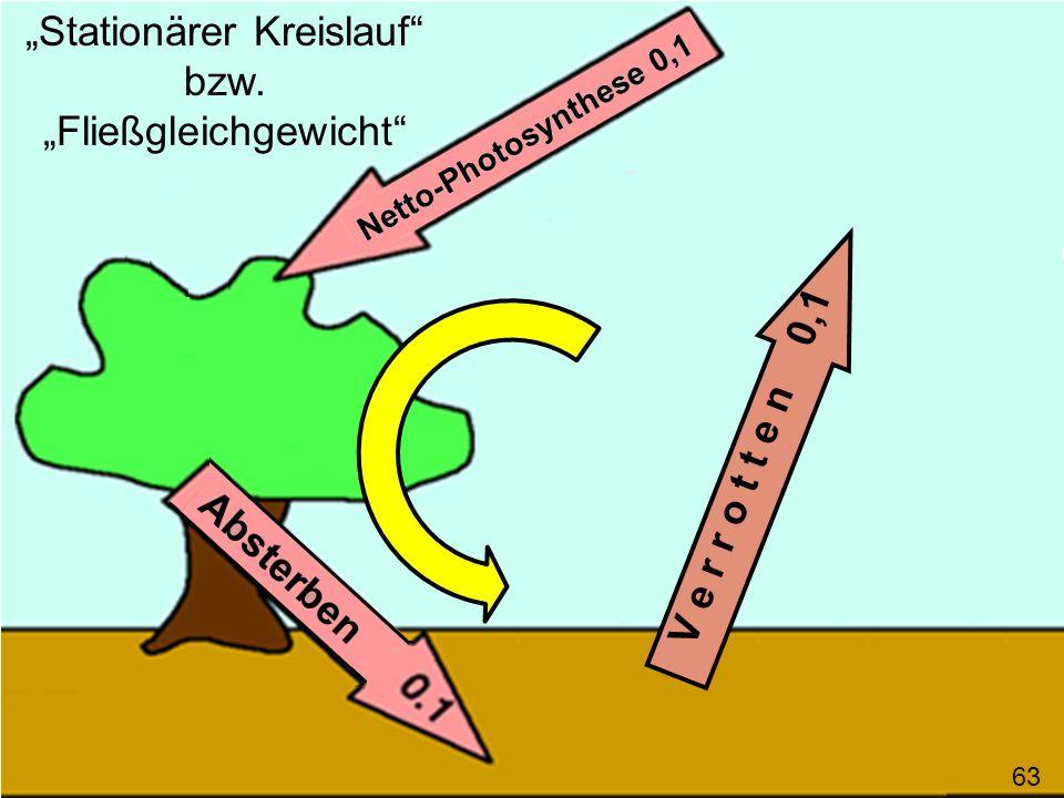 V e r r o t t e n 0,1 63 Stationärer Kreislauf bzw. Fließgleichgewicht