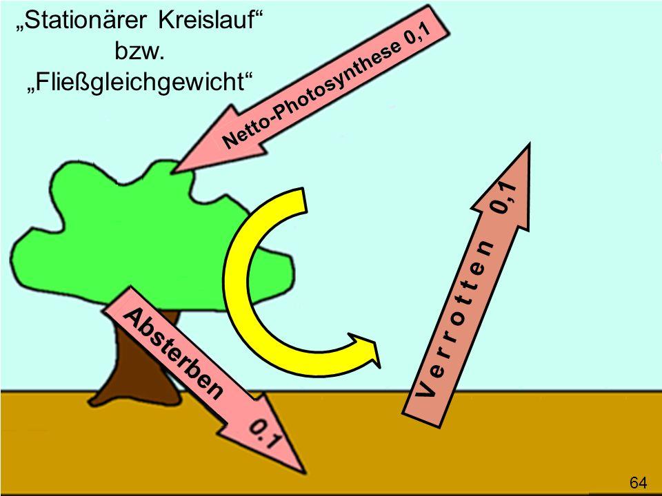 V e r r o t t e n 0,1 64 Stationärer Kreislauf bzw. Fließgleichgewicht