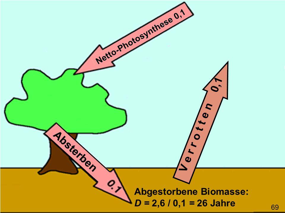 V e r r o t t e n 0,1 Abgestorbene Biomasse: D = 2,6 / 0,1 = 26 Jahre 69