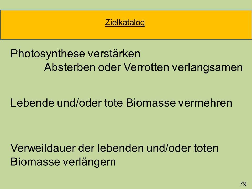 Photosynthese verstärken Absterben oder Verrotten verlangsamen 79 Lebende und/oder tote Biomasse vermehren Verweildauer der lebenden und/oder toten Bi