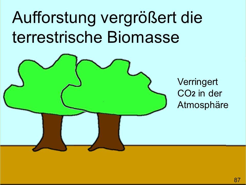 Aufforstung vergrößert die terrestrische Biomasse 87 Verringert CO 2 in der Atmosphäre