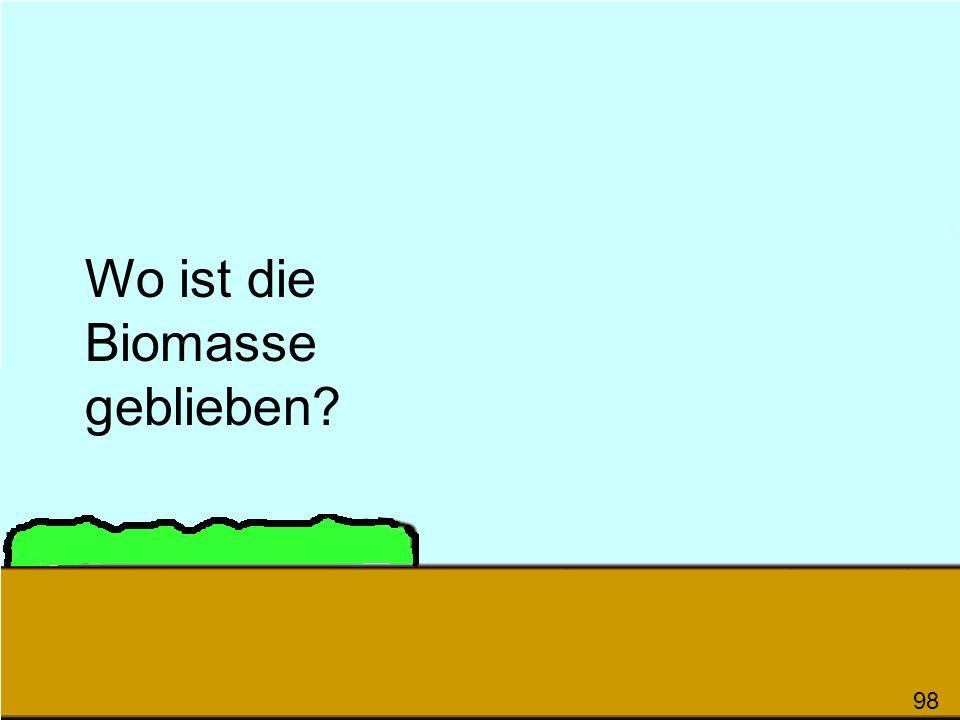 Wo ist die Biomasse geblieben? 98
