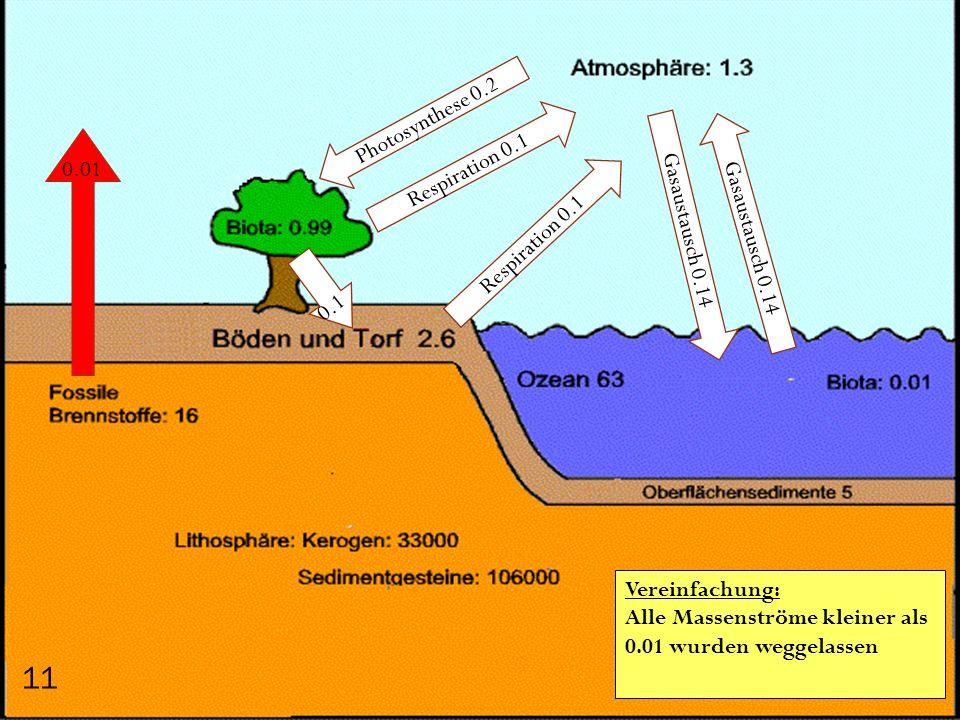 0.01 Photosynthese 0.2 Respiration 0.1 Gasaustausch 0.14 0.1 11 Vereinfachung: Alle Massenströme kleiner als 0.01 wurden weggelassen
