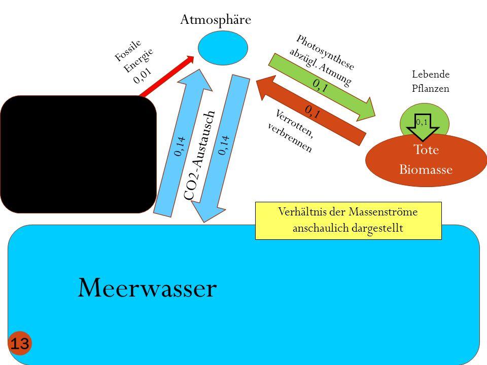 Atmosphäre Meerwasser Lebende Pflanzen 0,1 Tote Biomasse 0,1 0,14 CO2-Austausch Fossile Energie 0,01 13 Verhältnis der Massenströme anschaulich darges