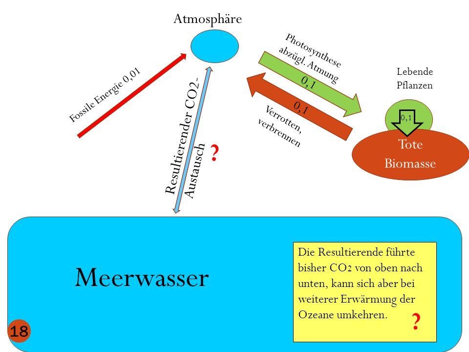 Atmosphäre Meerwasser Lebende Pflanzen 0,1 Tote Biomasse 0,1 18 Photosynthese abzügl. Atmung Verrotten, verbrennen 0,1 Resultierender CO2- Austausch D