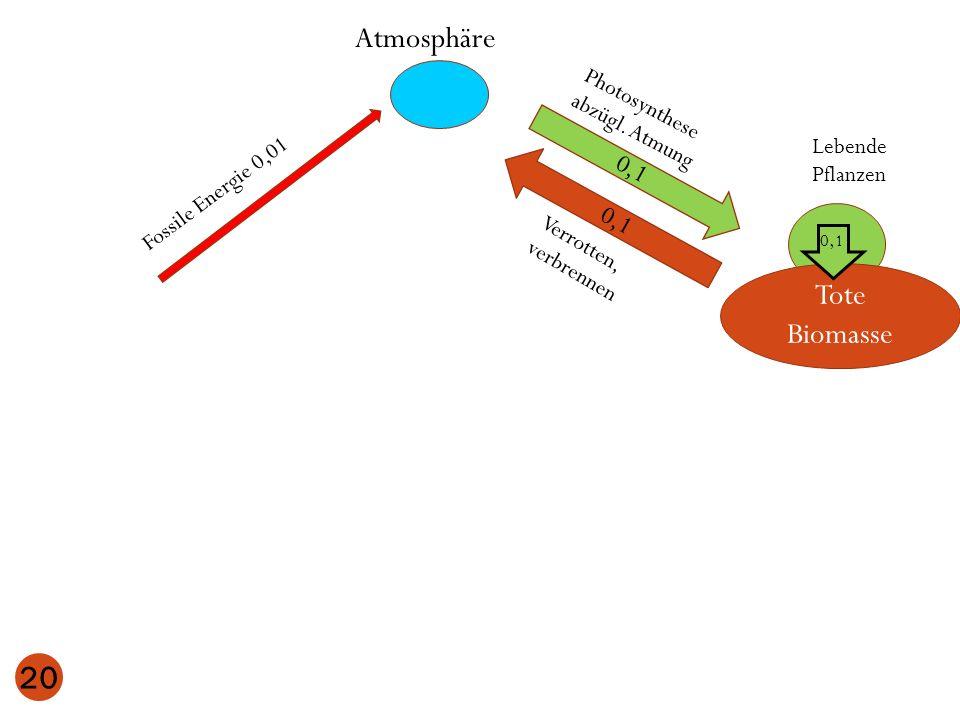 Atmosphäre Lebende Pflanzen 0,1 Tote Biomasse 0,1 20 Photosynthese abzügl. Atmung Verrotten, verbrennen 0,1 Fossile Energie 0,01