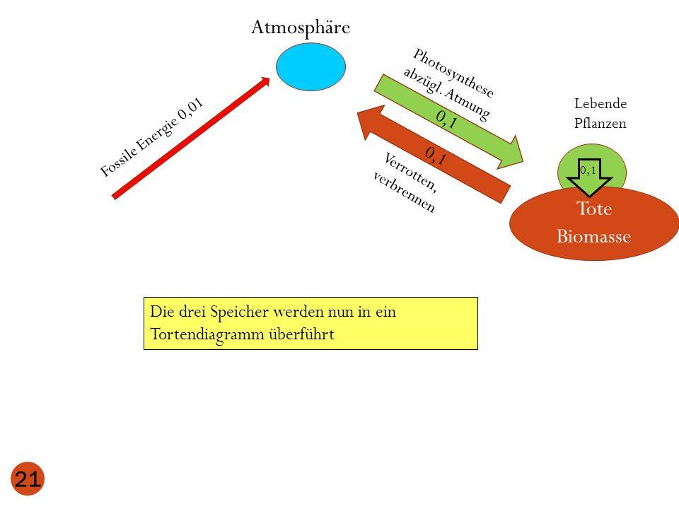 Atmosphäre Lebende Pflanzen 0,1 Tote Biomasse 0,1 21 Photosynthese abzügl. Atmung Verrotten, verbrennen 0,1 Fossile Energie 0,01 Die drei Speicher wer