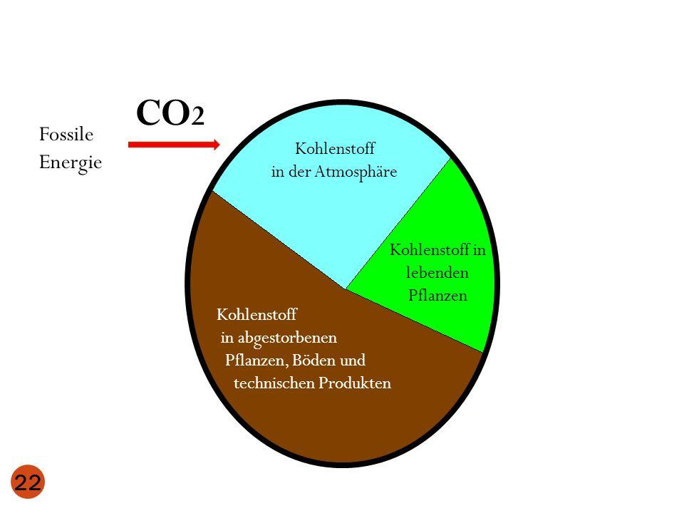 22 Kohlenstoff in der Atmosphäre Kohlenstoff in lebenden Pflanzen Kohlenstoff in abgestorbenen Pflanzen, Böden und technischen Produkten Fossile Energ