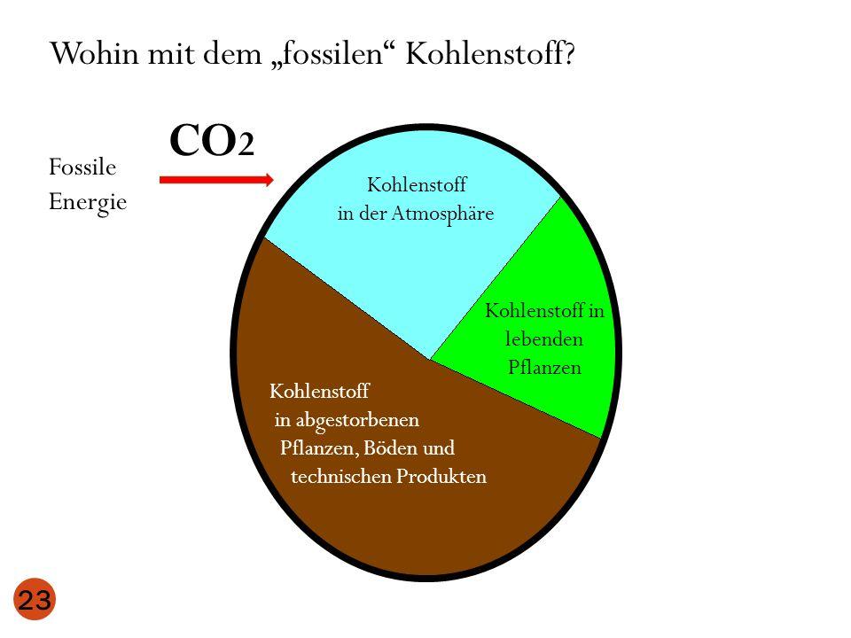 23 Kohlenstoff in der Atmosphäre Kohlenstoff in lebenden Pflanzen Kohlenstoff in abgestorbenen Pflanzen, Böden und technischen Produkten Wohin mit dem