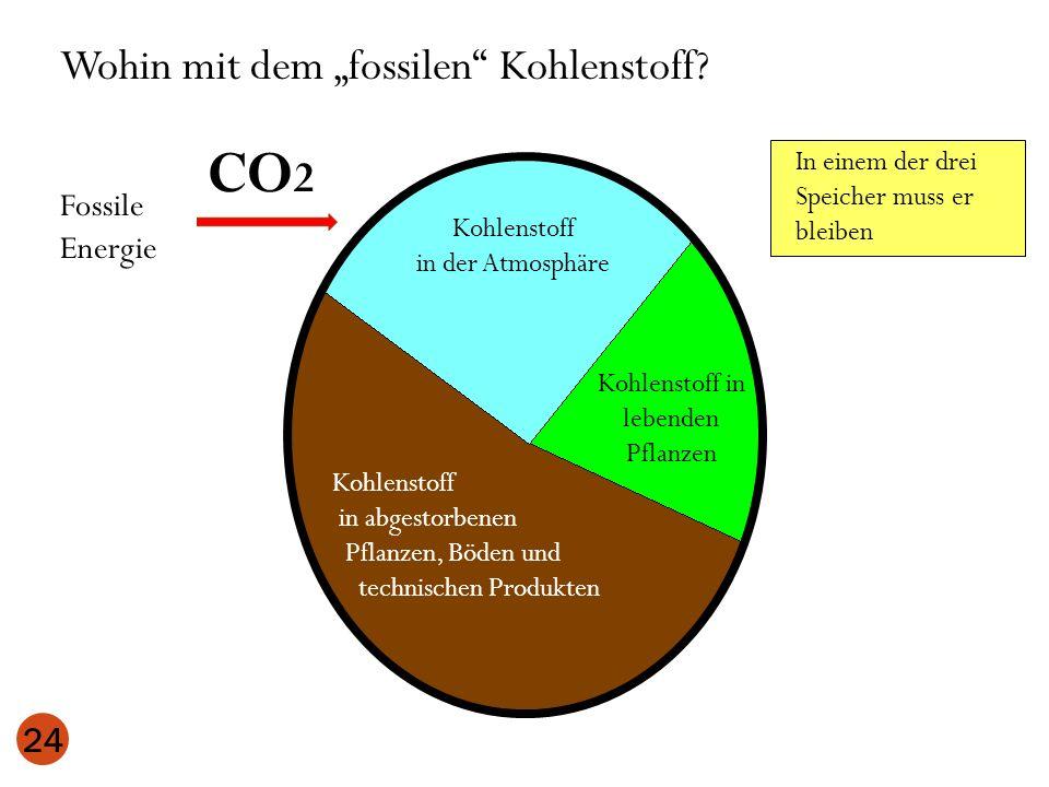 24 Kohlenstoff in der Atmosphäre Kohlenstoff in lebenden Pflanzen Kohlenstoff in abgestorbenen Pflanzen, Böden und technischen Produkten Wohin mit dem