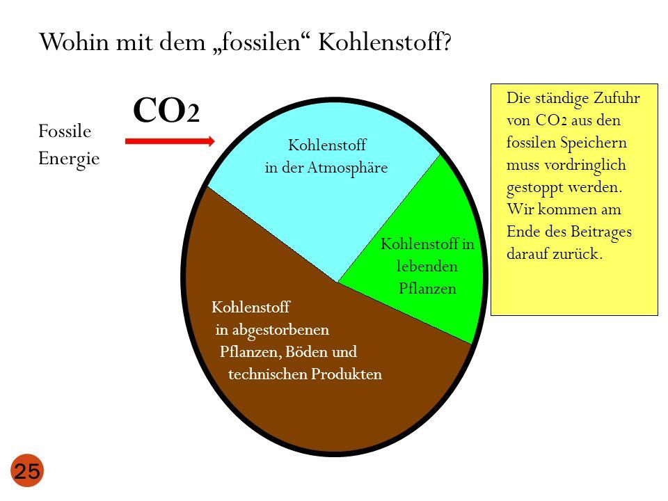 25 Kohlenstoff in der Atmosphäre Kohlenstoff in lebenden Pflanzen Kohlenstoff in abgestorbenen Pflanzen, Böden und technischen Produkten Wohin mit dem