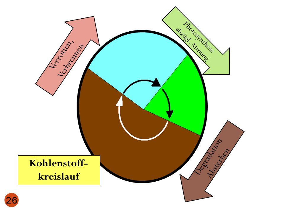 Photosynthese abzügl. Atmung Verrotten, Verbrennen 26 Degradation Absterben Kohlenstoff- kreislauf