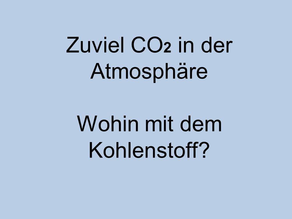 Zuviel CO 2 in der Atmosphäre Wohin mit dem Kohlenstoff?