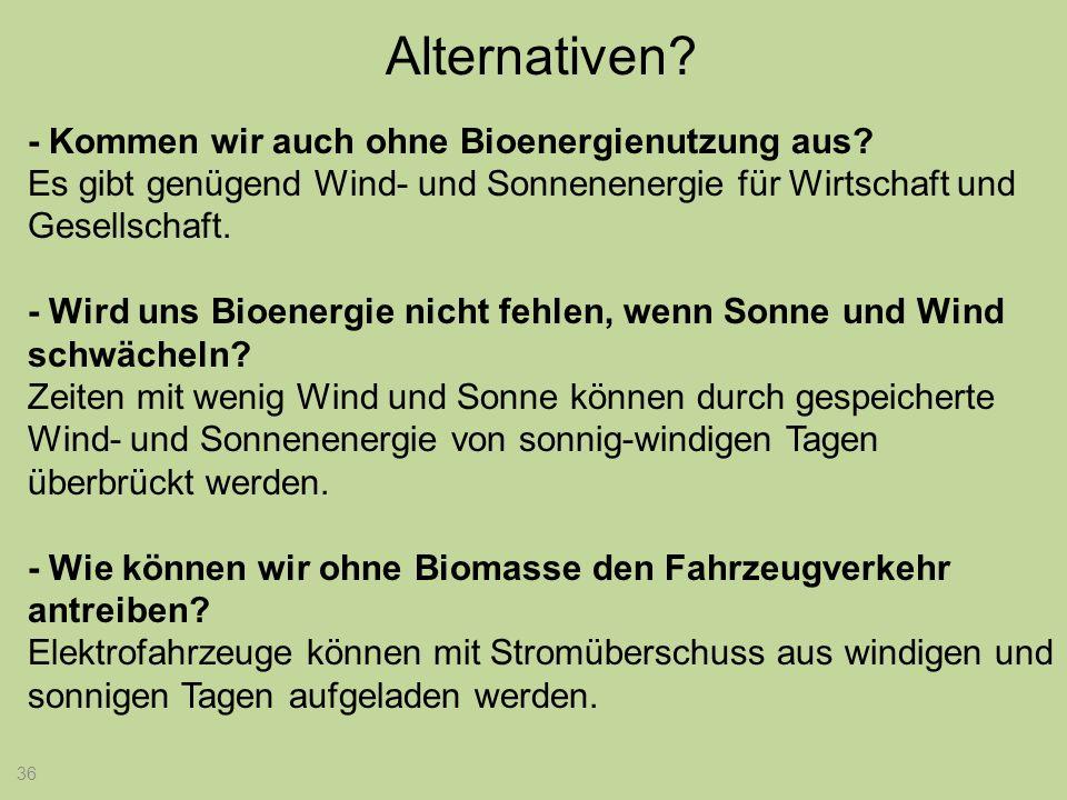 36 Alternativen? - Kommen wir auch ohne Bioenergienutzung aus? Es gibt genügend Wind- und Sonnenenergie für Wirtschaft und Gesellschaft. - Wird uns Bi