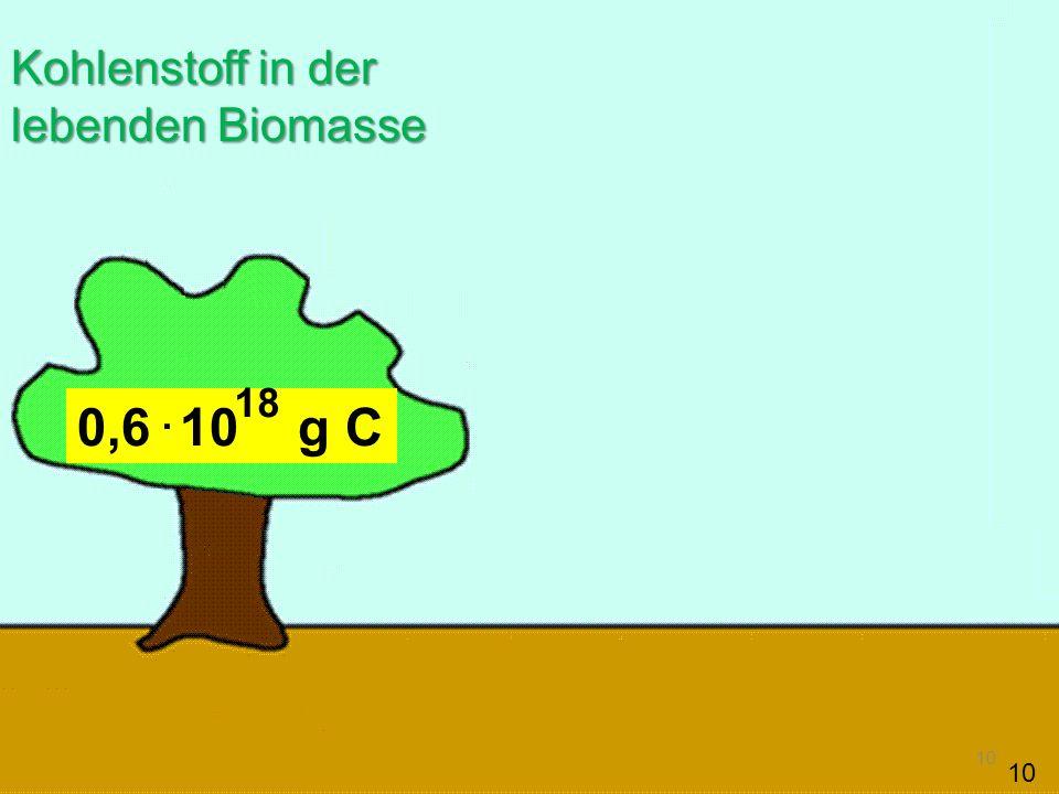 10 0,6 10 g C Kohlenstoff in der lebenden Biomasse. 18 10
